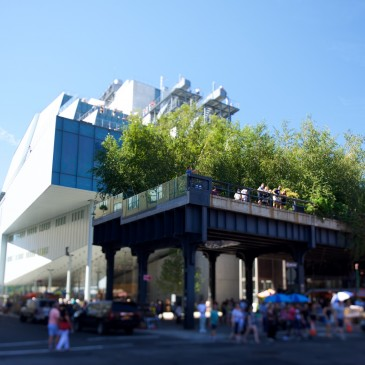 24 Exposures:  High Line and Freedom Tower, NYC