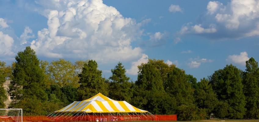 24 Exposures:  Annual Scott Arboretum Plant Sale